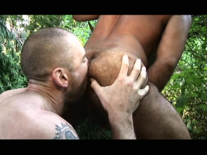 Hairy Hunx Rough And Ready Xvideo gay