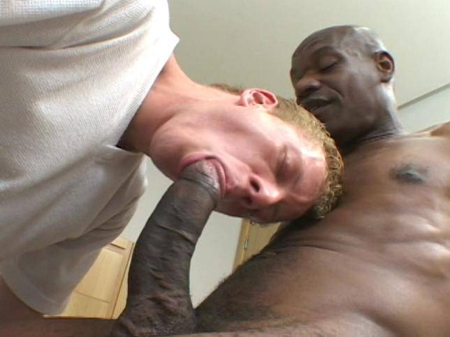 To Thy Master With Affection Xvideo gay