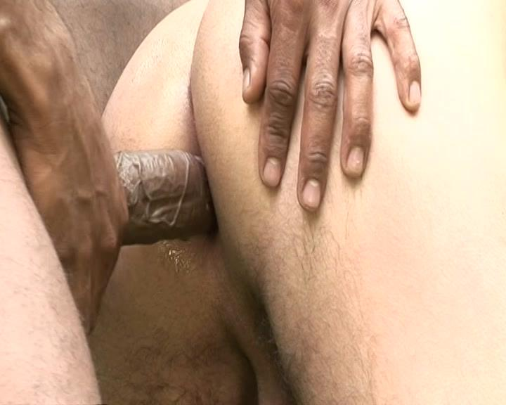 Devils In Paradise Xvideo gay