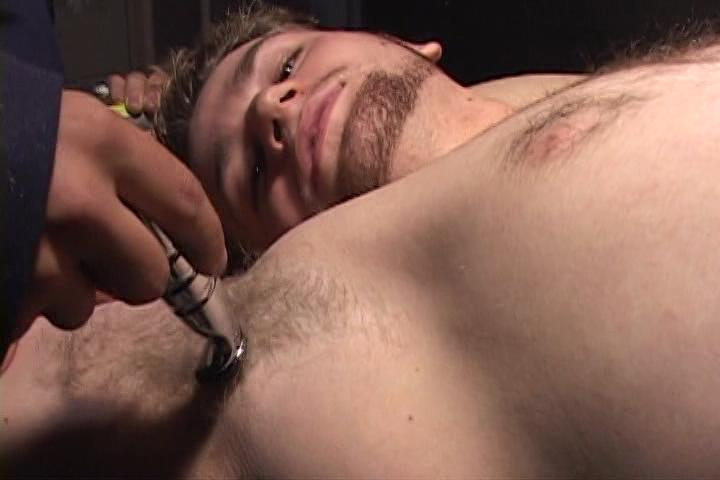 Shaved Xvideo gay
