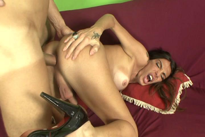 Kinky Horny Shemales 3 xvideos145609