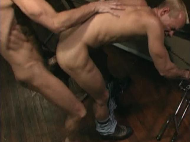 Cops Gone Bad Xvideo gay