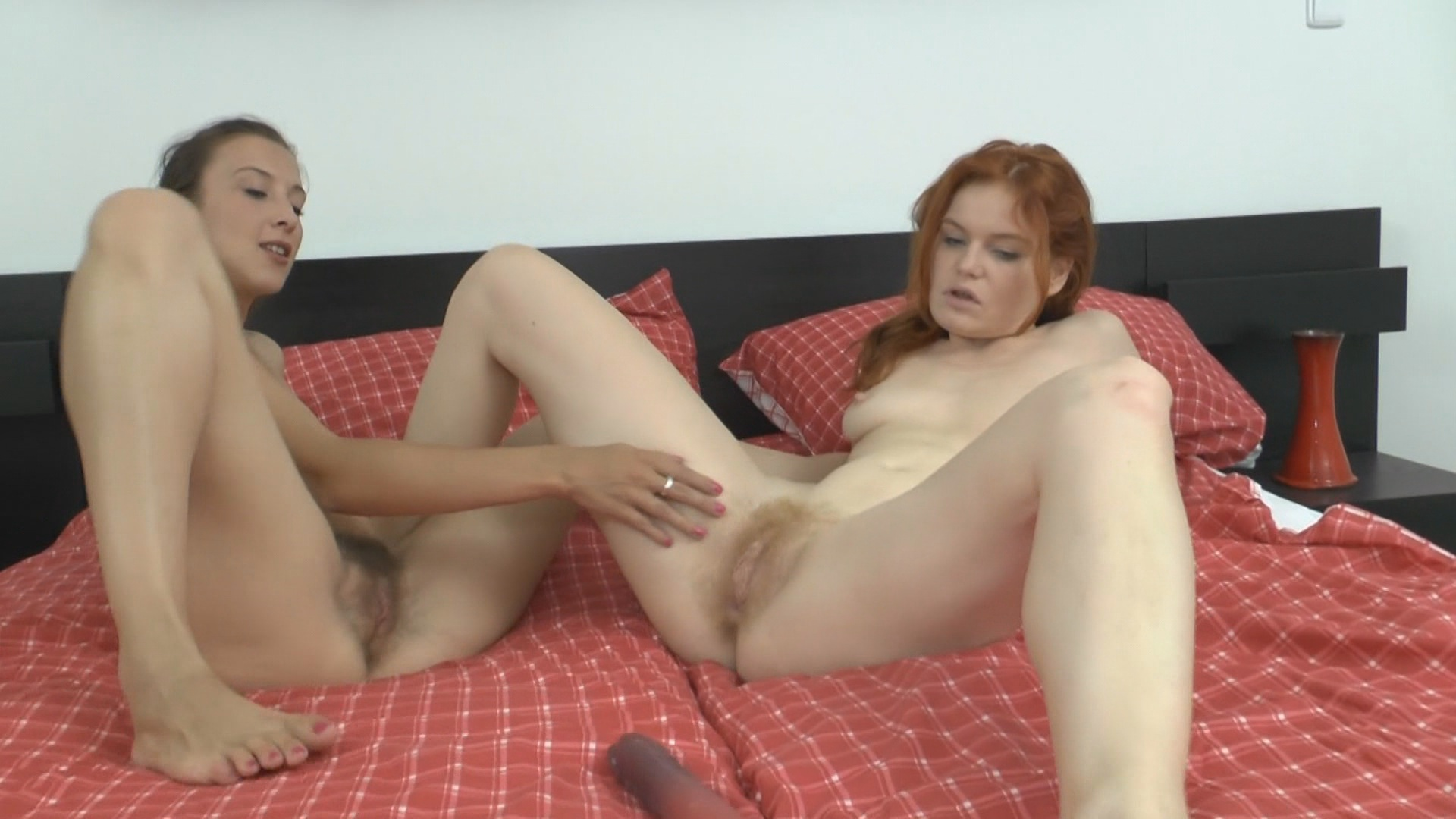 ATK Hairy Red Heads 2