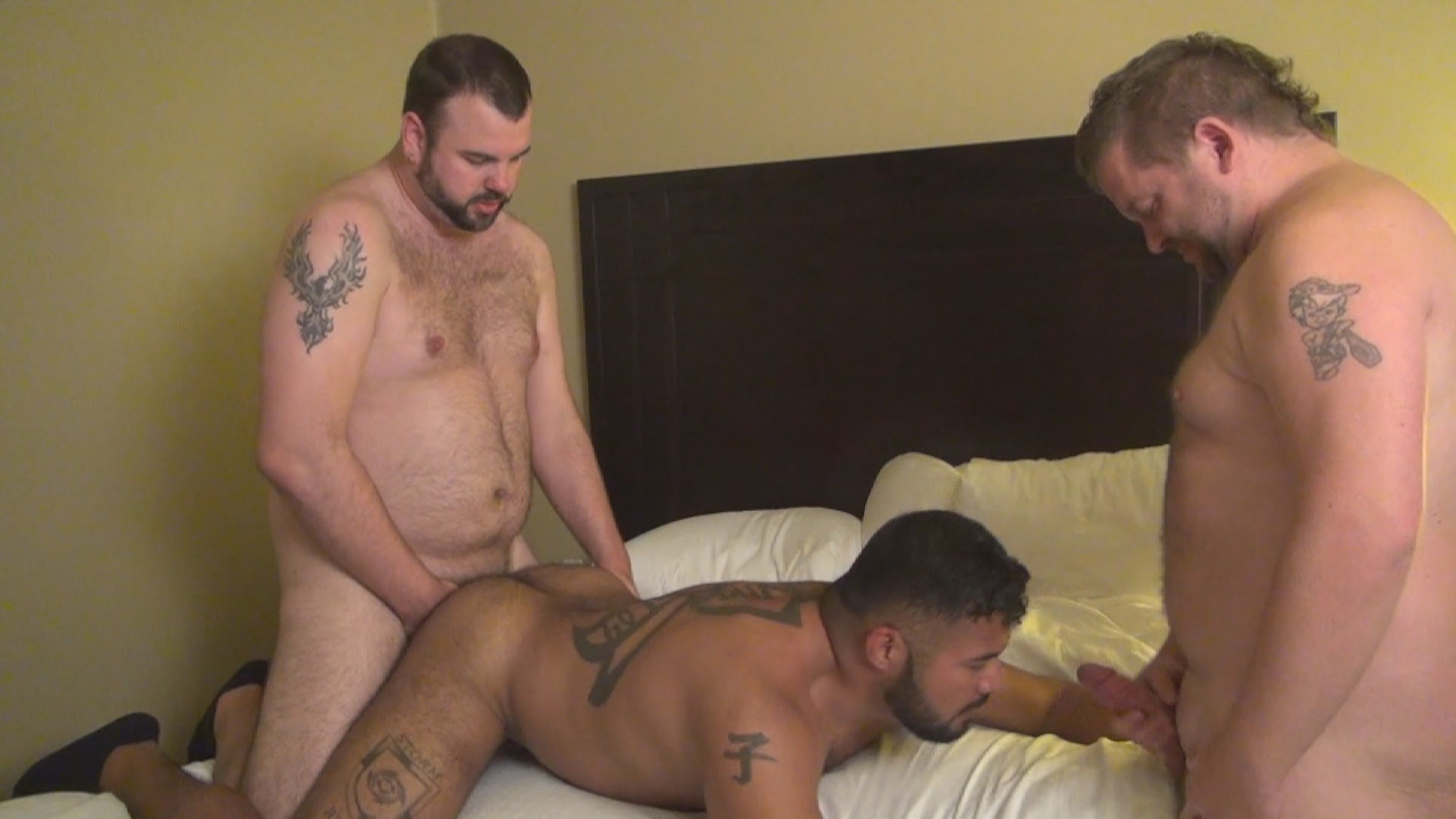 Hot Raw Bears Xvideo gay
