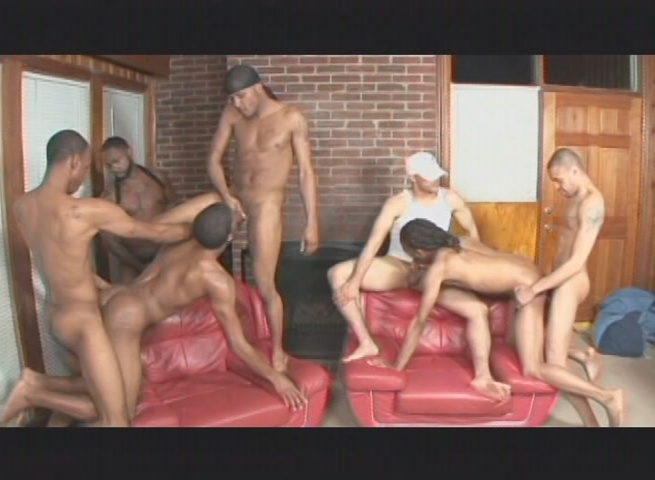 Cock Party Throw Down Xvideo gay