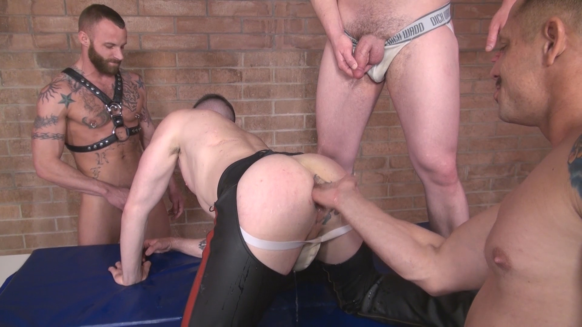 Pigs Xvideo gay