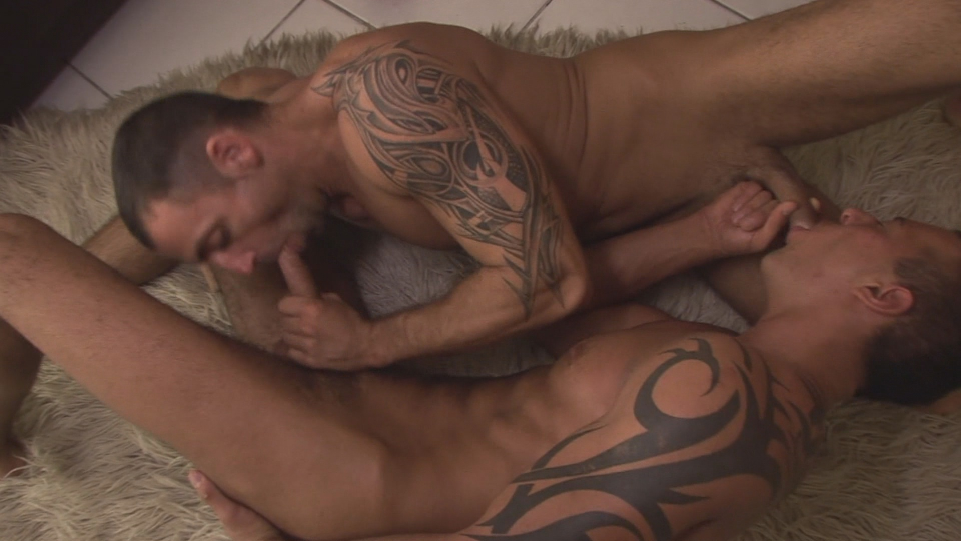 The Cellar Xvideo gay