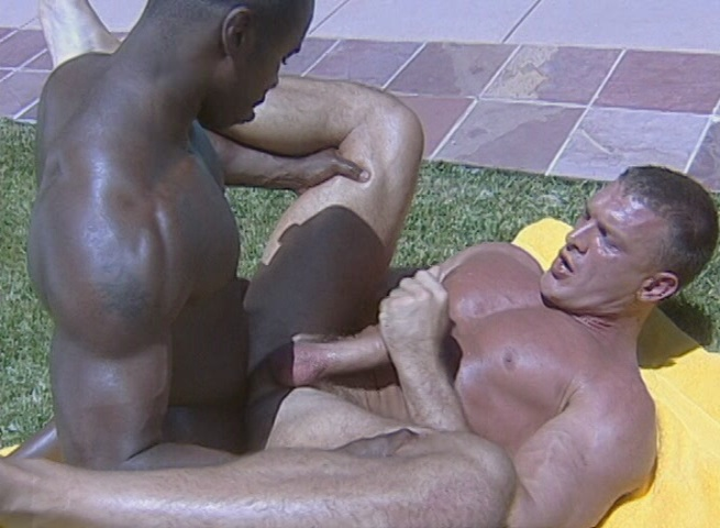 Humongous Cocks 25 Xvideo gay