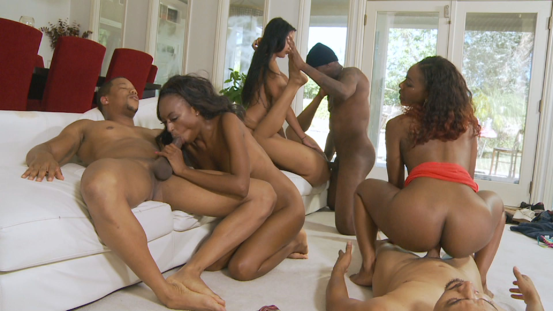 Block Party 2 xvideos181470