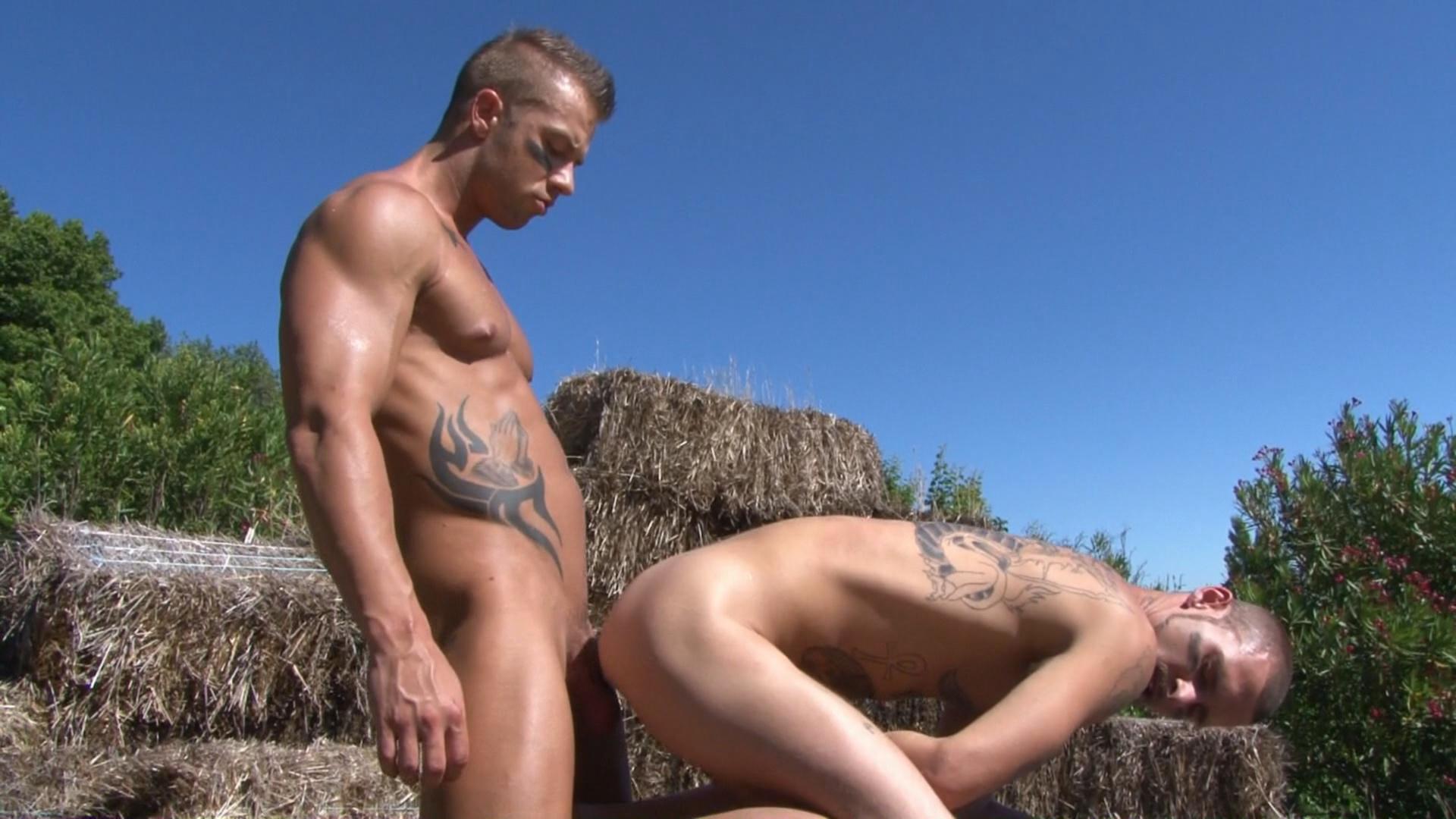 Hard Knocks Xvideo gay