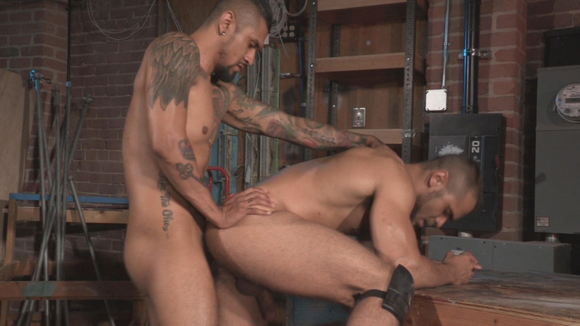 Crave Xvideo gay