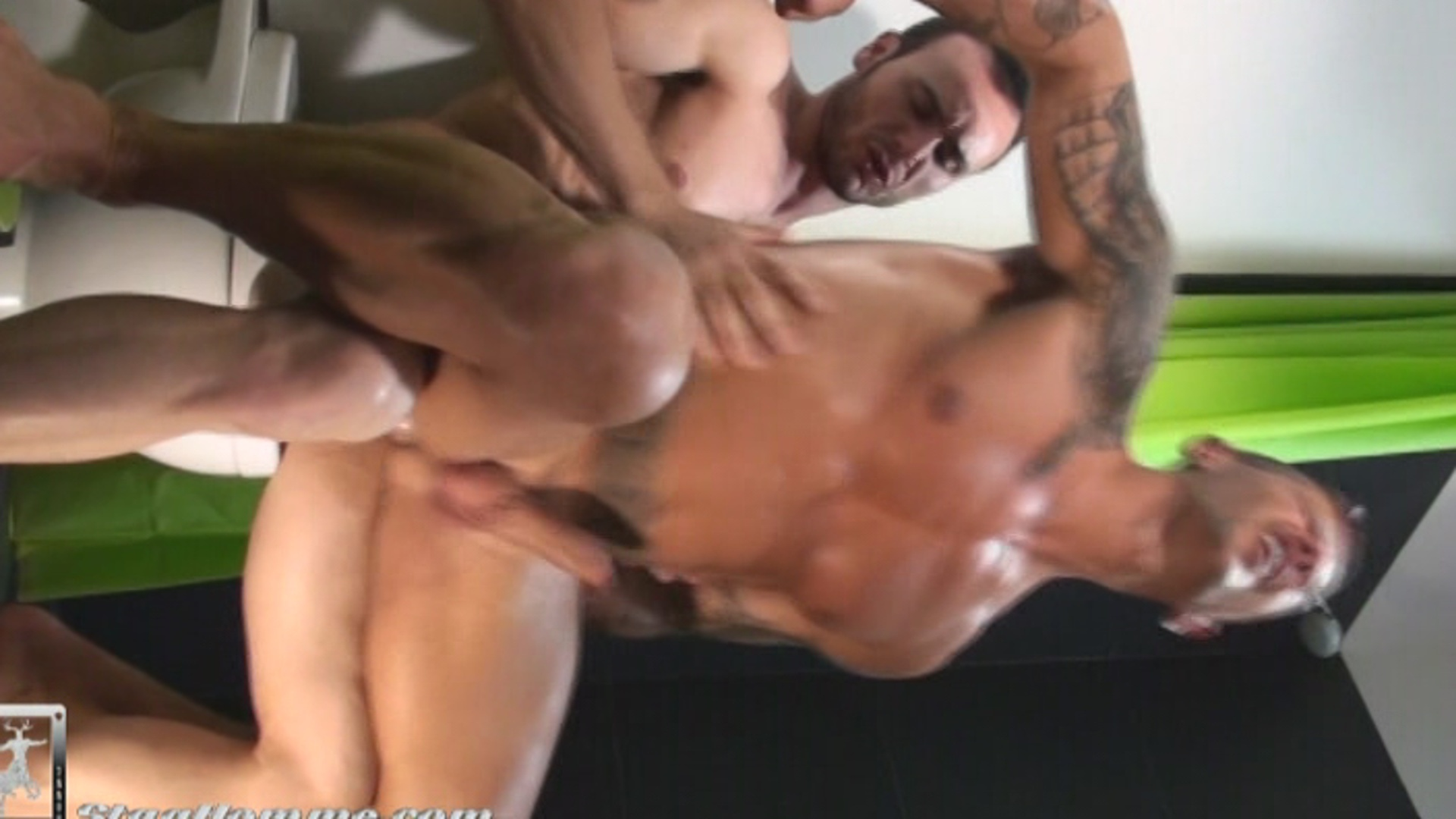 Stag You Stag Me Xvideo gay